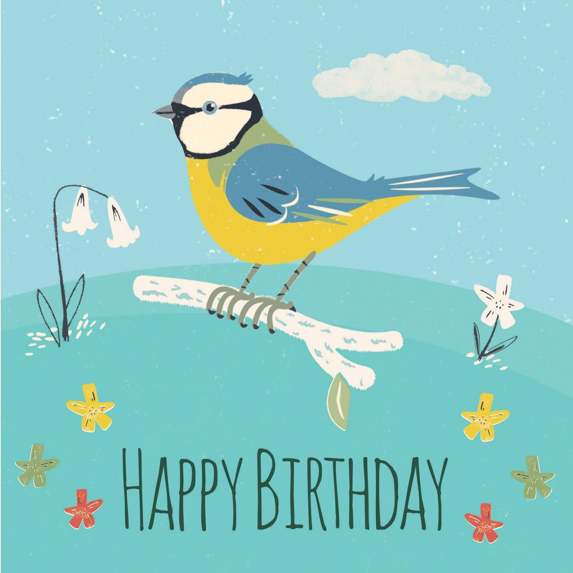 content/termekek/blue-tit-birthday-card.jpg